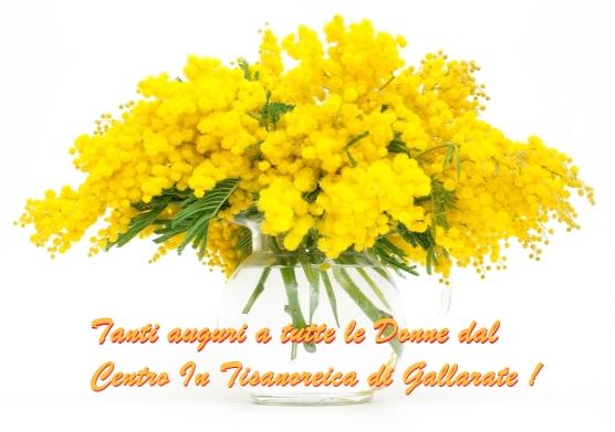 mimose-festa-donna-centro-tisanoreica-gallarate